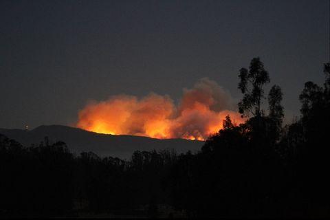 Vegetation, Nature, Brown, Natural environment, Atmosphere, Atmospheric phenomenon, Amber, Wildfire, Fire, Heat,