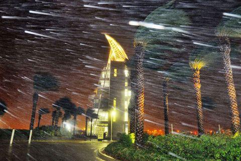 Night, Street light, Curb, Space, Sidewalk, Midnight, Tar, Security lighting, Palm tree, Driveway,