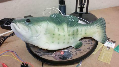 Green, Liquid, Ceramic, Fish, Porcelain, Amphibian, Fish, Animal figure,