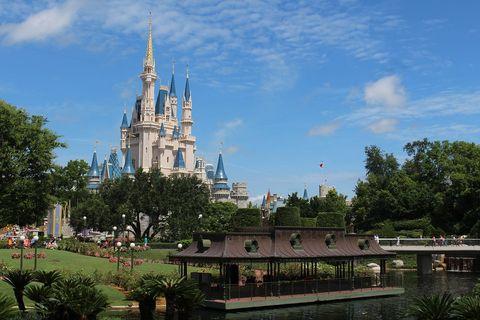 Spire, Walt disney world, Steeple, Garden, Park, Turret, Tourist attraction, Finial, Pond, Amusement park,