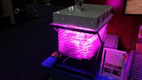 Magenta, Purple, Pink, Violet, Light, Lavender, Picture frame, Gas, Material property, Transparent material,