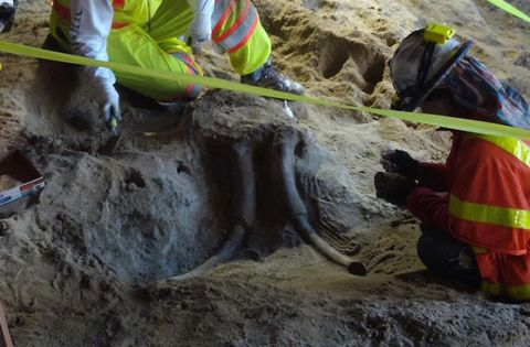 Soil, Geology, High-visibility clothing, Workwear, Blue-collar worker, Geological phenomenon, Boot, Tool, Archaeology, Mud,