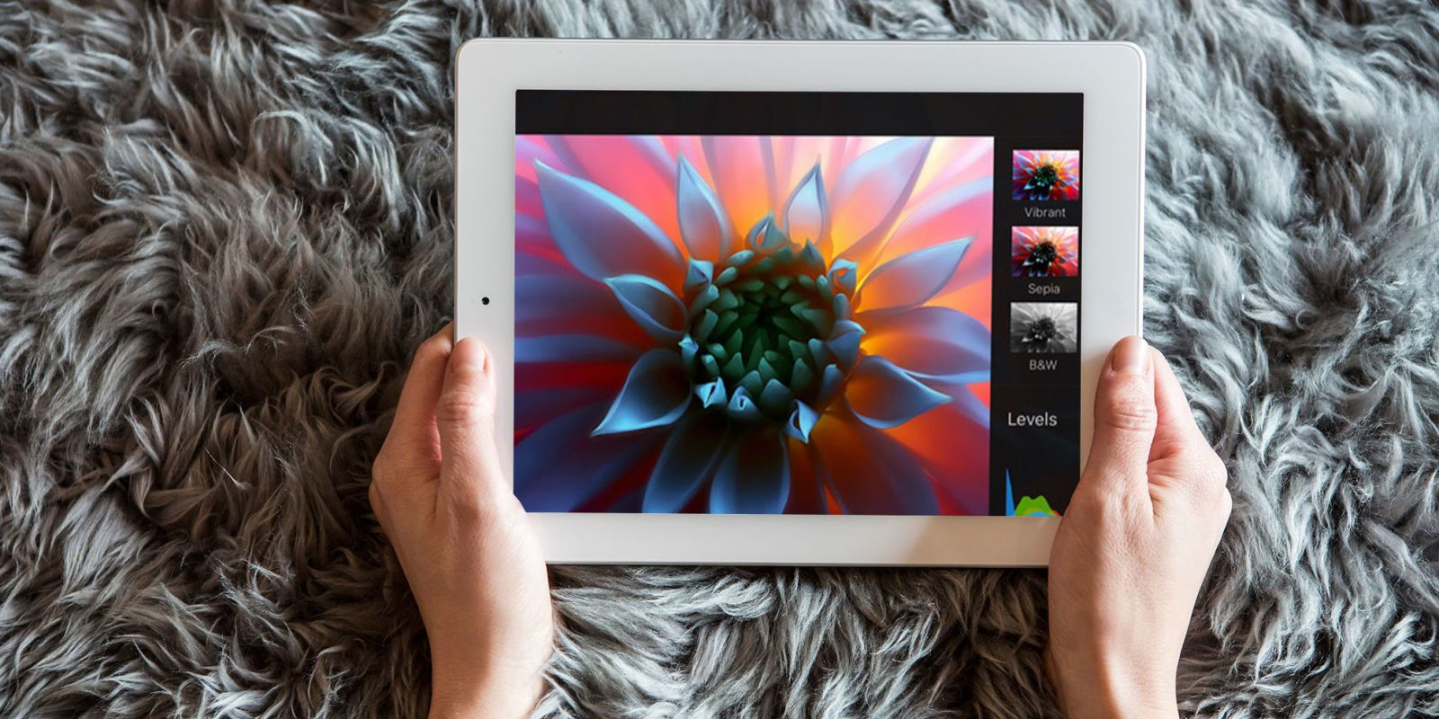 15 Apps and Games Every iPad Owner Should Download