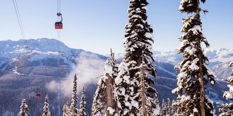 Nature, Daytime, Natural environment, Winter, Freezing, Woody plant, Mountain, Slope, Snow, Atmospheric phenomenon,