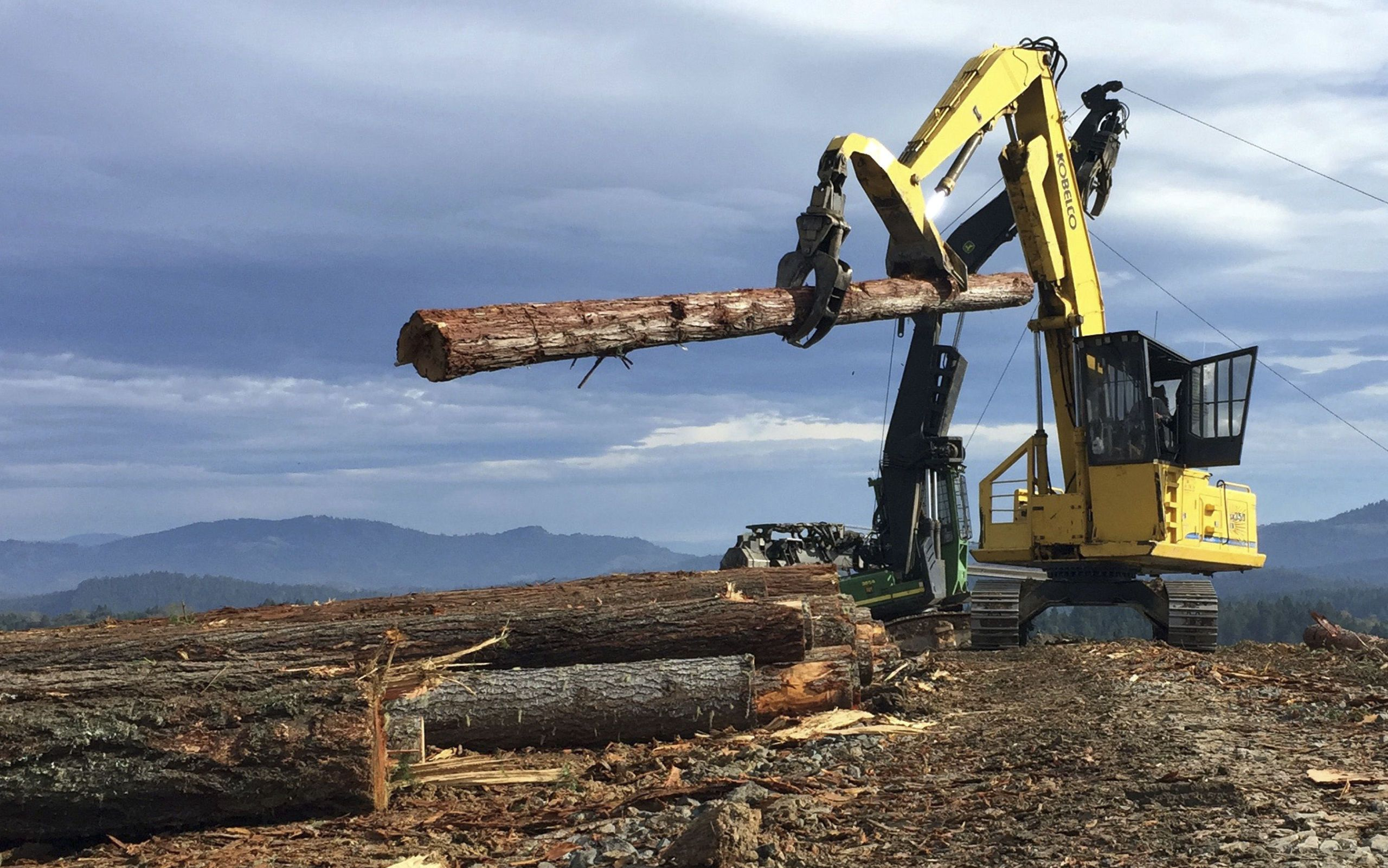 How New Technology Is Revitalizing the Struggling Timber Industry