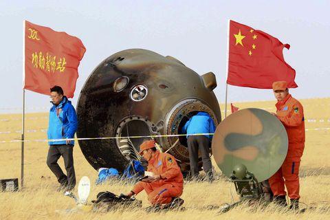 Human, Flag, World, Grassland, Banner, Marine mammal,