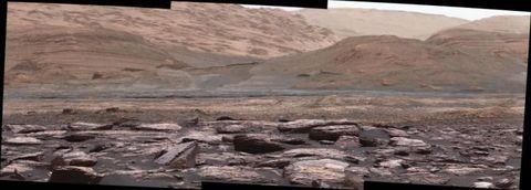 purple rock on mars