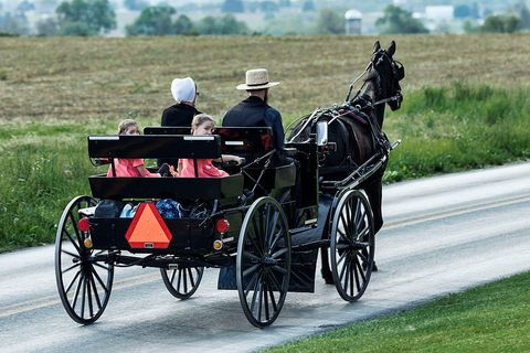 the amish horse drawn buggy is more tech forward than you think