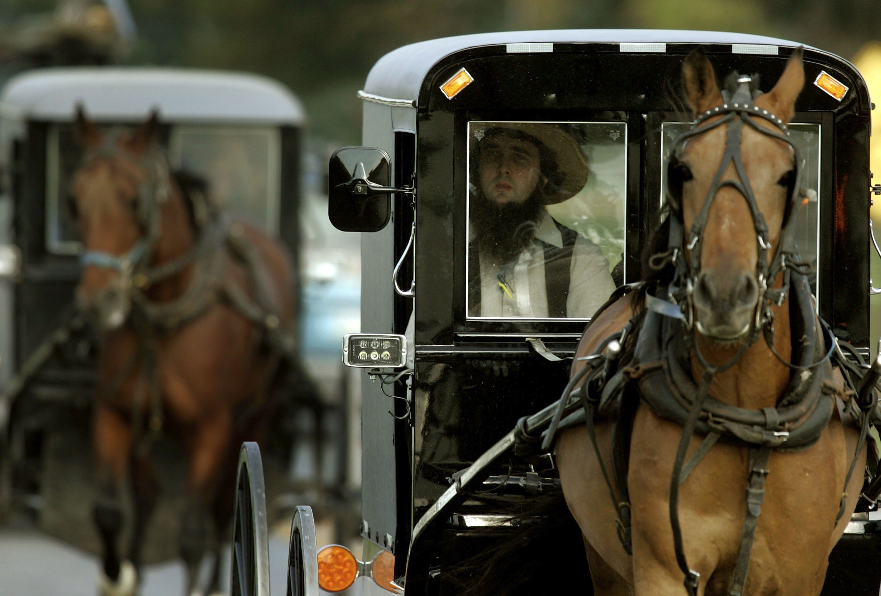 The Amish Horse-Drawn Buggy Is More Tech-Forward Than You Think