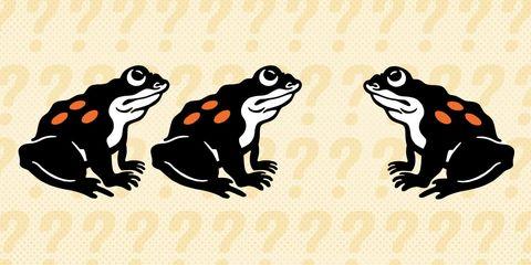 frog-riddle.jpg