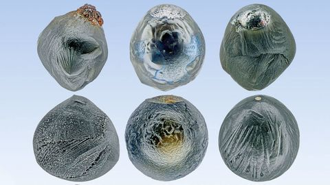 How to Build Your Own Micrometeorite Collection
