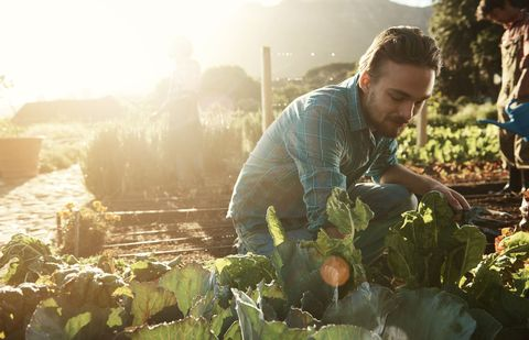 How to Build a Garden That Grows Forever