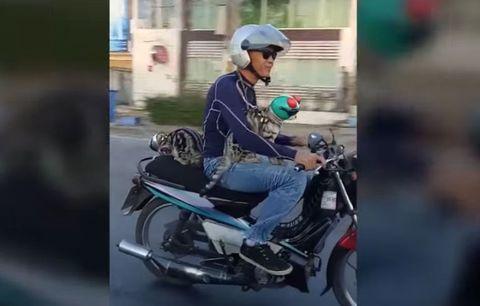 Motorcycle, Motorcycle helmet, Automotive design, Helmet, Automotive lighting, Glass, Headlamp, Personal protective equipment, Fender, Automotive mirror,
