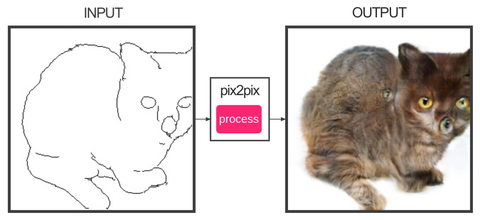 Draw Your Own Nightmare Cats With This AI Program
