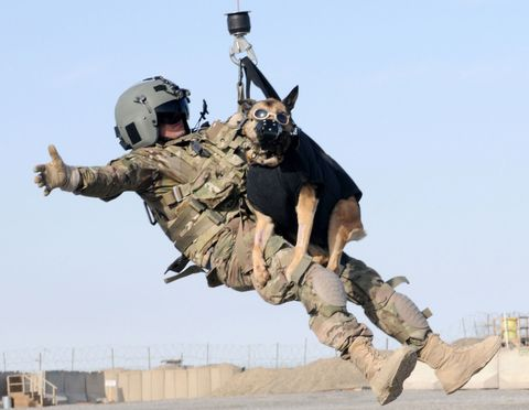 Military, Air force, Army, Soldier, Vehicle, Gesture, Marines,