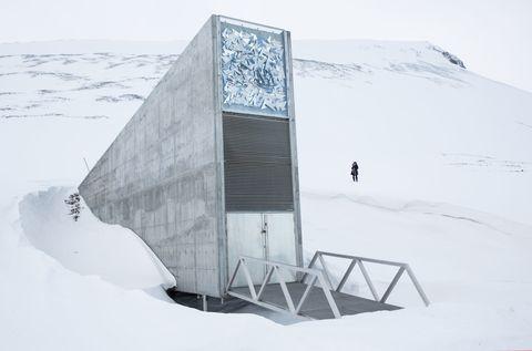 Svalbard Norway Seed Bank