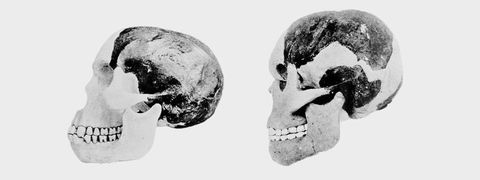 "<p>Perhaps the most notorious fraud in the search for a ""missing link"" (which is a misnomer, by the way) was the Piltdown Man. Charles Dawson, who proclaimed the find in 1912,&nbsp;was rather, shall we say, eccentric. The non-credentialed paleontologist and anthropologist had plenty of discoveries under his belt,&nbsp;ranging from valid to fallacious to outright frauds, before Piltdown rocked the world.</p><p>There's plenty of reasons to be suspicious of any claimed ""missing link,"" and that's especially true for a skull found in a quarry in the United Kingdom,&nbsp;far&nbsp;from the source of the great apes in Africa. Dawson proclaimed the Piltdown man fell somewhere between apes and humans.&nbsp;</p><p><span>Not so much. It turned out in the end that&nbsp;Piltdown&nbsp;was a great ape, but a 1953 investigation conducted&nbsp;long after Dawson's death revealed it to be a modern ape bleached and </span><a href=""http://www.pbs.org/wgbh/aso/databank/entries/do53pi.html"" data-tracking-id=""recirc-text-link"">artificially weathered</a><span> to look like a 500,000-year-old jawbone. Research from 2010&nbsp;suggests that&nbsp;</span><a href=""http://rsos.royalsocietypublishing.org/content/3/8/160328"" data-tracking-id=""recirc-text-link"">Dawson acted alone</a><span> in the fraud.&nbsp;</span></p>"
