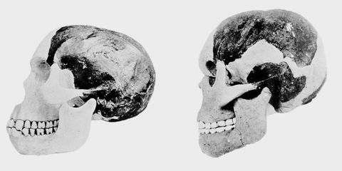 """<p>Perhaps the most notorious fraud in the search for a """"missing link"""" (which is a misnomer, by the way) was the Piltdown Man. Charles Dawson, who proclaimed the find in 1912,&nbsp;was rather, shall we say, eccentric. The non-credentialed paleontologist and anthropologist had plenty of discoveries under his belt,&nbsp;ranging from valid to fallacious to outright frauds, before Piltdown rocked the world.</p><p>There's plenty of reasons to be suspicious of any claimed """"missing link,"""" and that's especially true for a skull found in a quarry in the United Kingdom,&nbsp;far&nbsp;from the source of the great apes in Africa. Dawson proclaimed the Piltdown man fell somewhere between apes and humans.&nbsp;</p><p><span>Not so much. It turned out in the end that&nbsp;Piltdown&nbsp;was a great ape, but a 1953 investigation conducted&nbsp;long after Dawson's death revealed it to be a modern ape bleached and </span><a href=""""http://www.pbs.org/wgbh/aso/databank/entries/do53pi.html"""" data-tracking-id=""""recirc-text-link"""">artificially weathered</a><span> to look like a 500,000-year-old jawbone. Research from 2010&nbsp;suggests that&nbsp;</span><a href=""""http://rsos.royalsocietypublishing.org/content/3/8/160328"""" data-tracking-id=""""recirc-text-link"""">Dawson acted alone</a><span> in the fraud.&nbsp;</span></p>"""