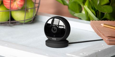 Product, Technology, Electronic device, Plant, Webcam,