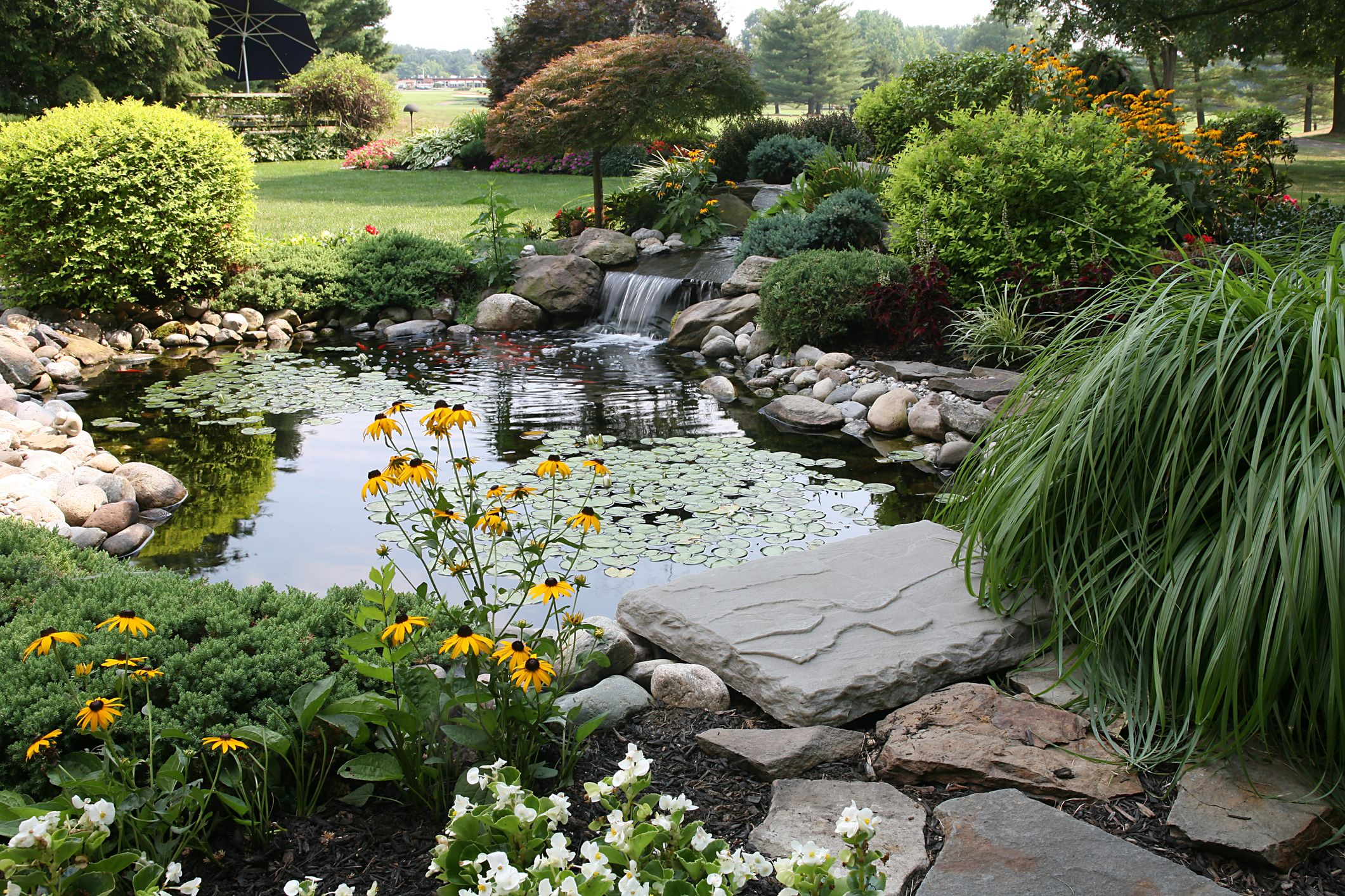 Lovely north Texas Landscaping Ideas