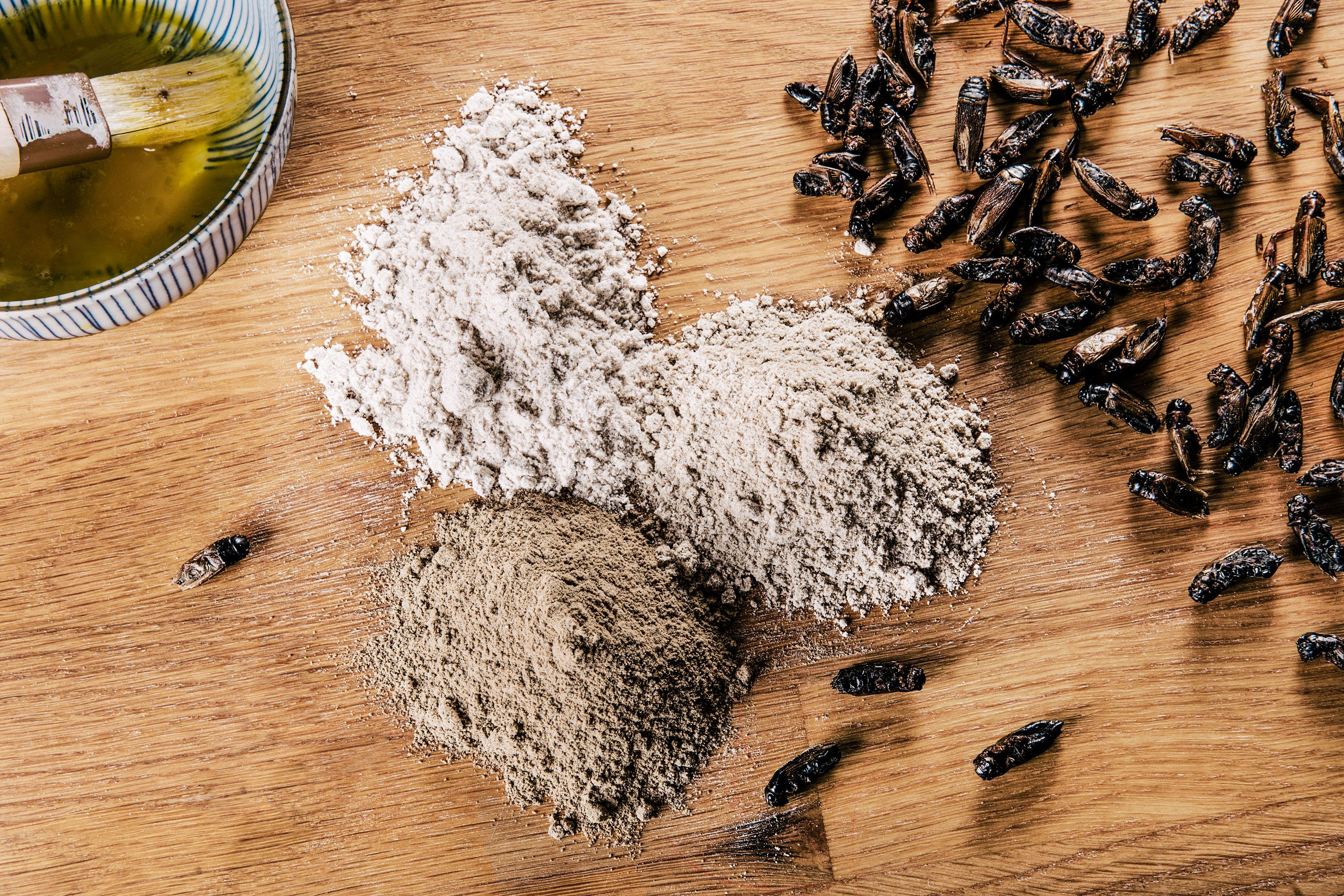 Cooking With Crickets Will Save the World. Here's How To Do It.