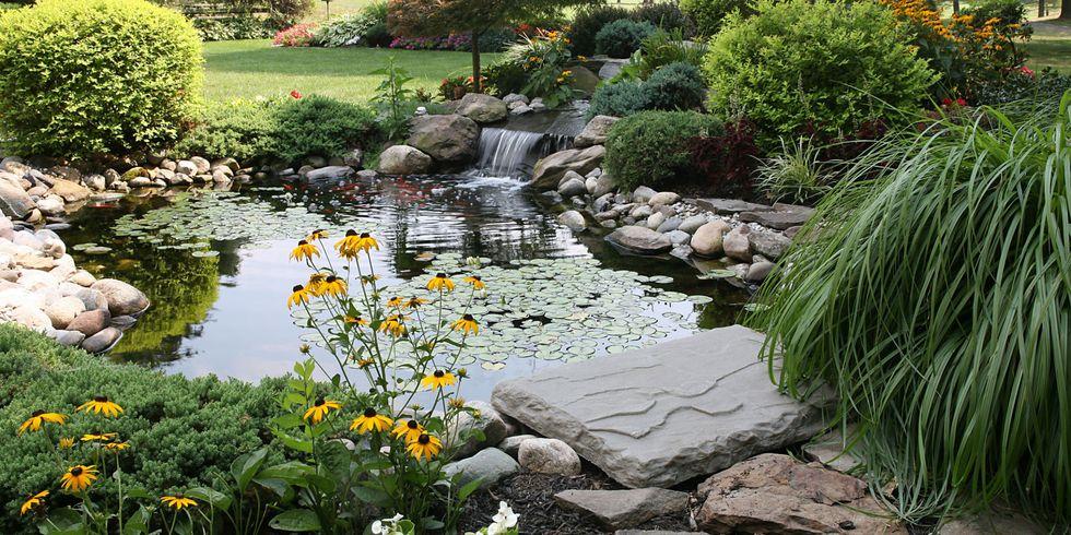 11 Landscaping Ideas That Will Transform Your Yard
