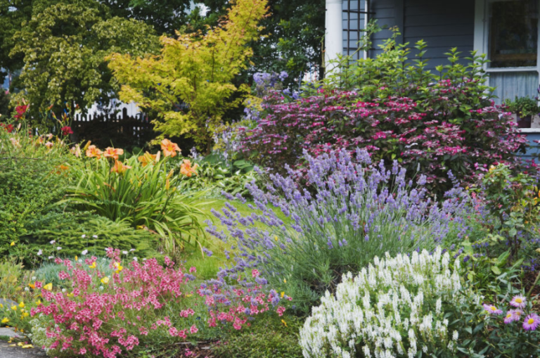 12 Landscaping Ideas To Transform Your Yard In Spring 2018