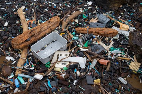 Waste, Pollution, Litter, Scrap, Plastic, Wood, Recycling,