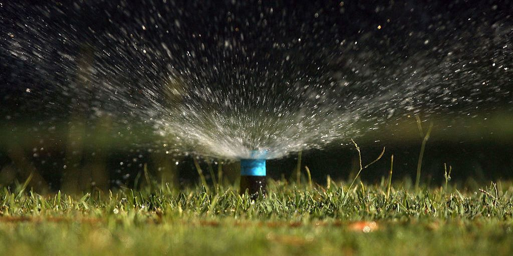 Best Time To Water Lawn Watering Your Lawn Tips