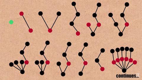 tree-graphs-tree3.jpg