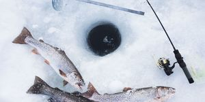 Tip 4: Ice Fish Efficiently