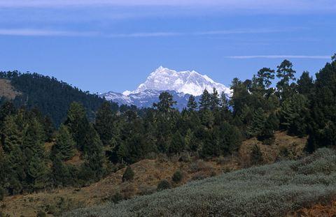 Mountainous landforms, Plant community, Mountain range, Highland, Mountain, Summit, Wilderness, Forest, Biome, Terrain,