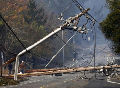 Overhead power line, Sky, Tree, Plant, Public utility, Wheel, Electricity,