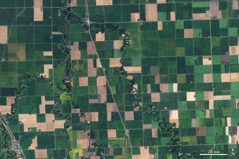 Green, Pattern, Military camouflage, Camouflage, Design, Textile, Aerial photography, Uniform, Square, Plant,