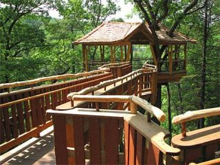 david wenzel treehouse