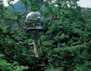 beach rock treehouse on okinawa, by taka