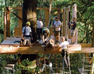 pete nelson treehouses of the world. pete nelson treehouses of the world i