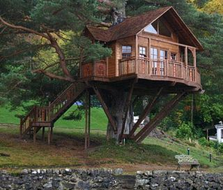 the lodge treehouse