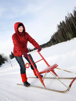 A Brief History of the Sled