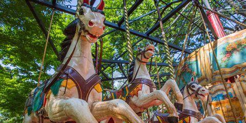 Amusement park, Sculpture, Amusement ride, Fawn, Carousel, Liver, Playground, Horse, Park, Fair,