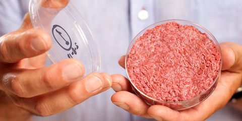 5 Weird Foods on the Menu of the Future