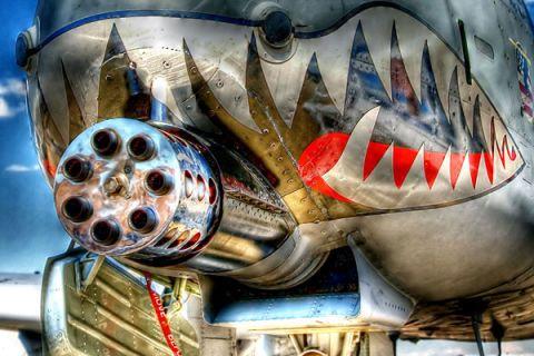 Warthog Shark II