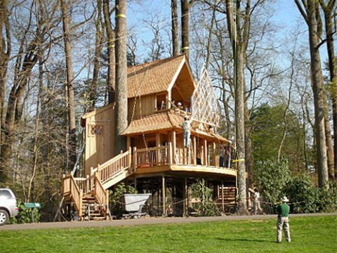 Tree House Designs Ideas For Treehouse For Kids