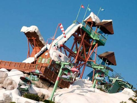 summit plummet at walt disney worlds blizzard beach orlando fla