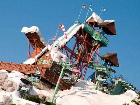 summit plummet at walt disney worlds blizzard beach orlando fla