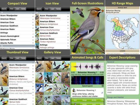 iBird App, Free