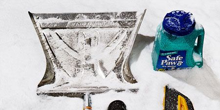 The 6 Things You Need to Dig Yourself Out This Winter