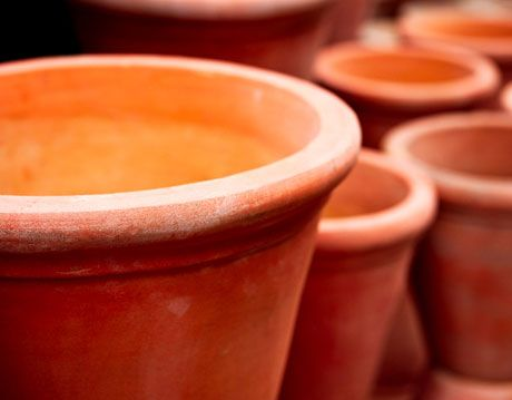 terra cotta garden pots