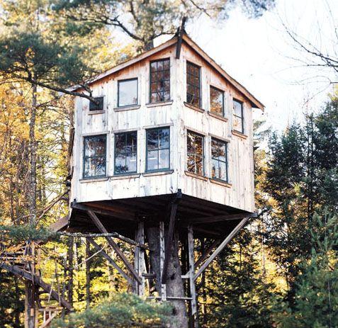 extreme treehouses rh popularmechanics com