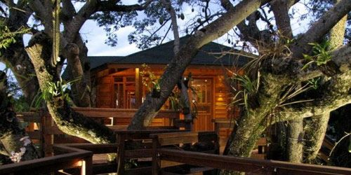10 Best Treehouse Plans and Designs - Coolest Tree Houses Ever